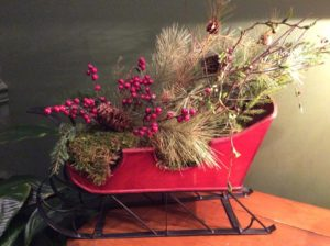 Arrangement of evergreens and red berries in red sleigh