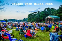 Briggs Farm Blues Fest - visitors gathered in lawn sitting in lawn chairs enjoying music on stage