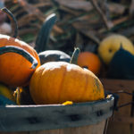 closeup of part of two orange pumpkins in gray wood basket, more pumpkins in background