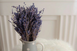 Lavender in Pitcher Photo by Eddie Garcia on UnSplash
