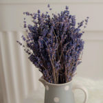 Lavender bouquet in light gray pitcher with white dots in front of white wall