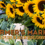 Background of veggies and sunflowers with text: Farmer's Markets to Explore in Bloomsburg/Danville