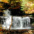 Ricketts Glen white rushing waterfall with pool surrounded by fall leaves below and orange yellow and green trees above