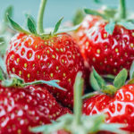 cluster of 4 ripe red strawberries with green stems