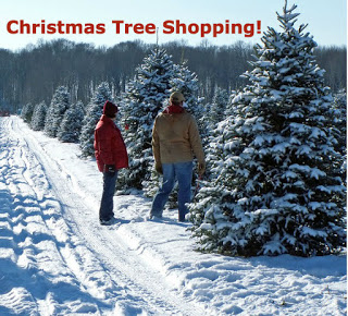 backs of two people in red and brown jackets standing in snowy tracks looking at rows of Christmas trees